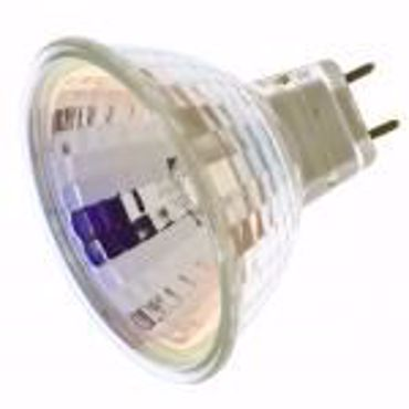 Picture for category 120 Volts G8 Base
